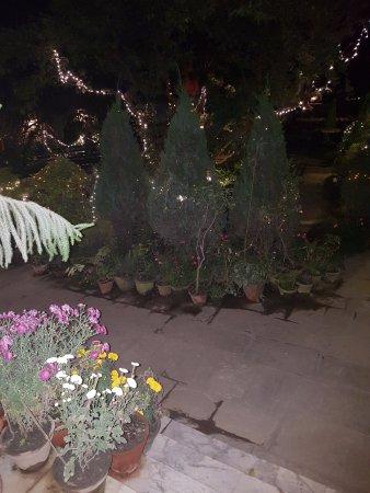 نيرفانا جاردن هوتل: garden by night