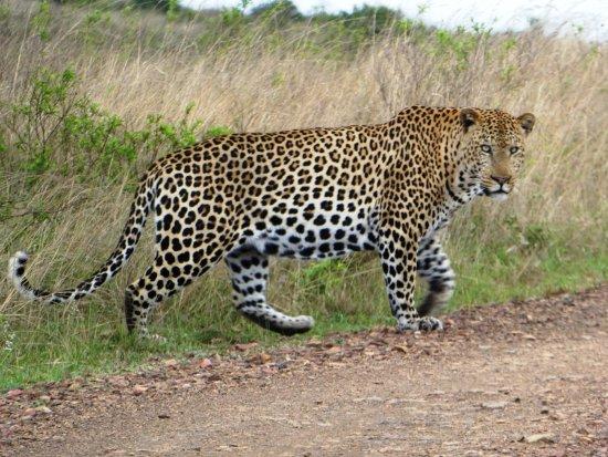 KwaZulu-Natal Picture