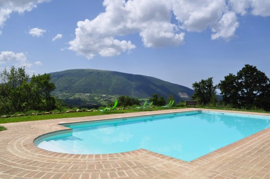 Le Ginestre Bed and Breakfast Assisi: Our big pool with panoramic view of Monte Subasio