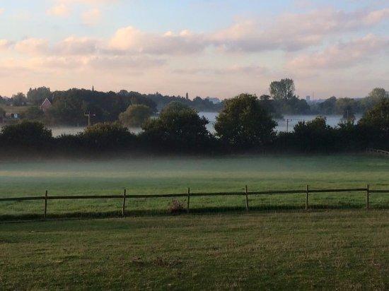 Cookley, UK: Field walks straight from the door - pet friendly