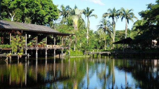 Sepilok, Malesia: 1340303_large.jpg