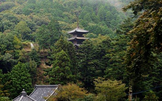 Fukushoji Temple