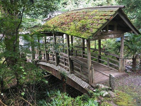 Yanetsuki Covered Bridge - Roman Yatsuhashi