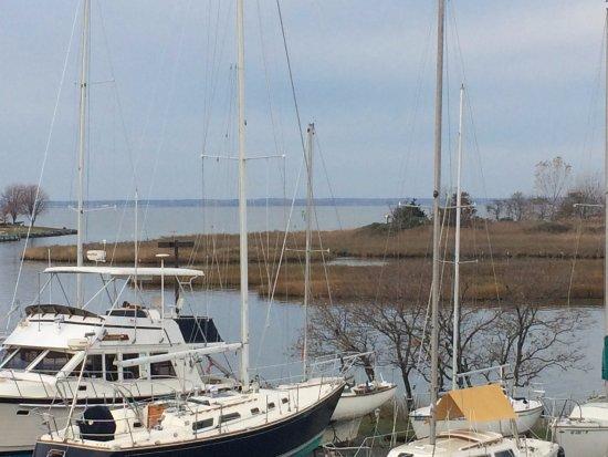 Knapp's Narrows Marina & Inn Bild