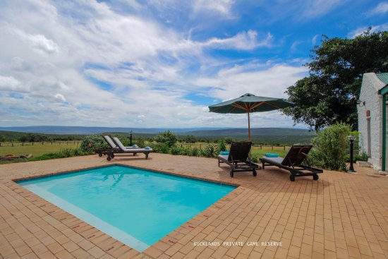 Grahamstown, South Africa: Pool at Bucklands Lodge