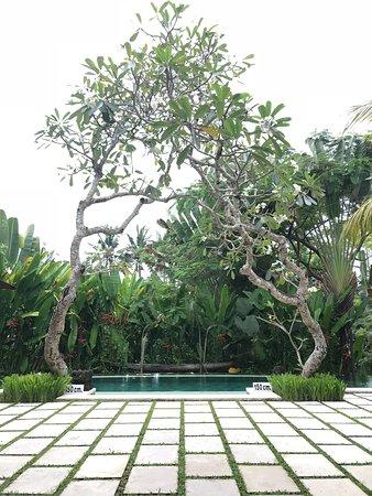 魯瓦克別墅照片