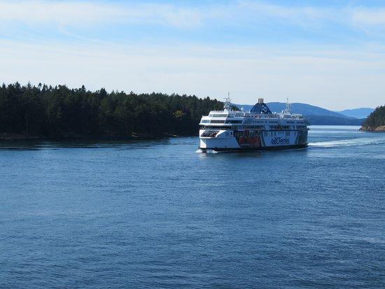 Ναναΐμο, Καναδάς: BC Ferries