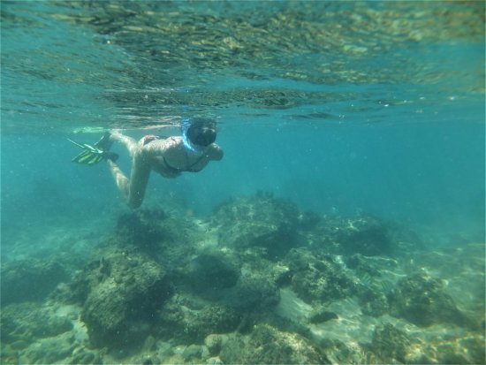 St Lucia, แอฟริกาใต้: relaxing snorkeling adventure at Cape Vidal in the iSimangaliso wetland park