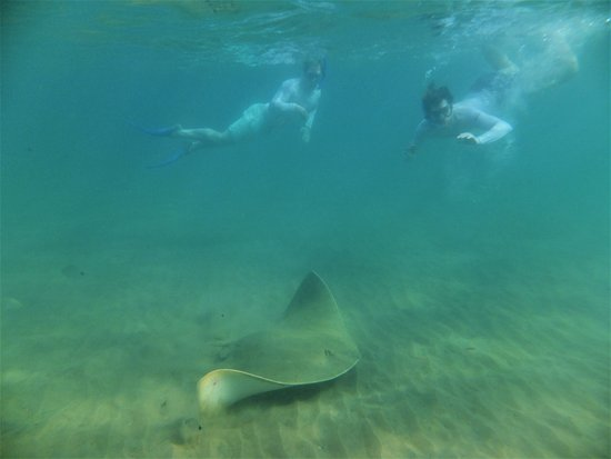 St Lucia, แอฟริกาใต้: 2 happy guests on our Cape vidal snorkeling adventure in the iSimangaliso park