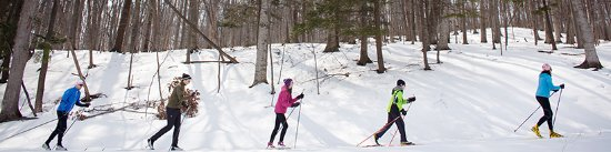 Traverse City, MI: Cross Country Skiing