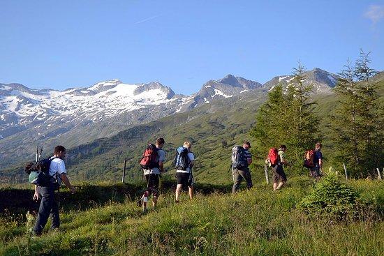 Grossarl, النمسا: Wandern mit BERG-GESUND