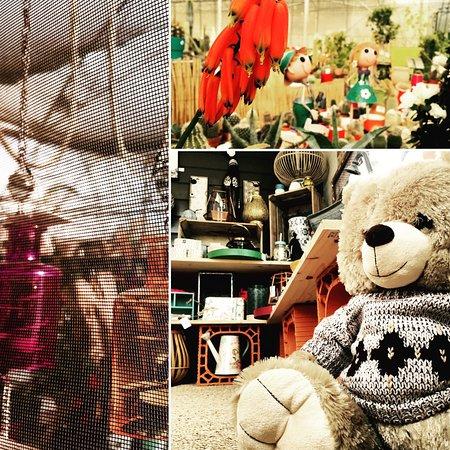 Saint-Chinian, فرنسا: La Boutique