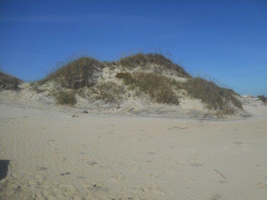 Hatteras Island, NC: High Dunes on Cape Hatteras National Seashore