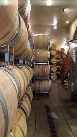 Rutherford, Californië: Barrel room