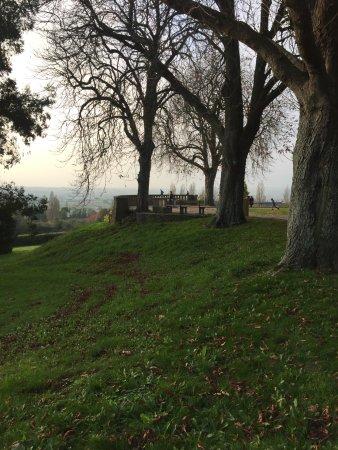 Jardin des plantes avranches 2018 ce qu 39 il faut for Au jardin des plantes avranches