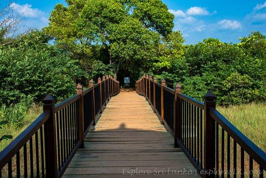 Beddegana Wetland Park