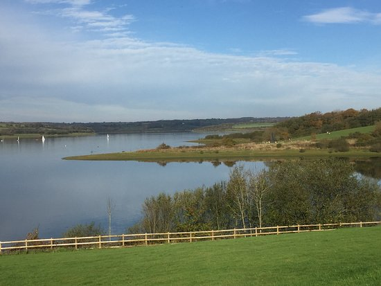 Lifton, UK: View of Lake from Cafe