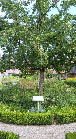 Rehna, เยอรมนี: Klostergarten