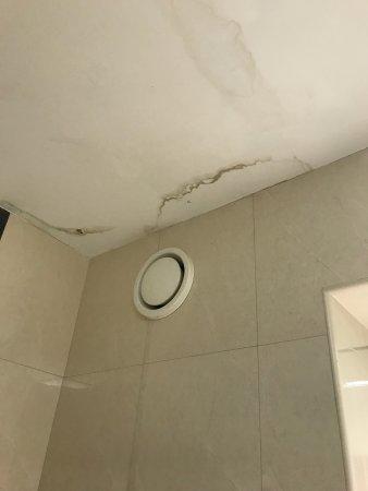 Charleville Park Hotel: Вот такие подтеки в вантой и услуги глажки