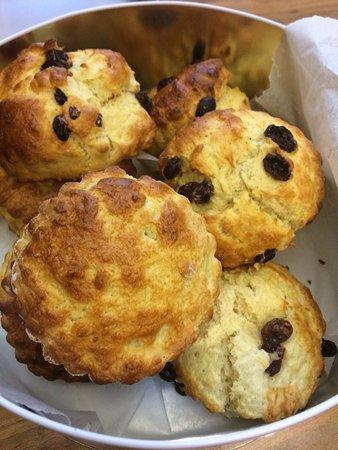Kegworth, UK: Freshly baked scones