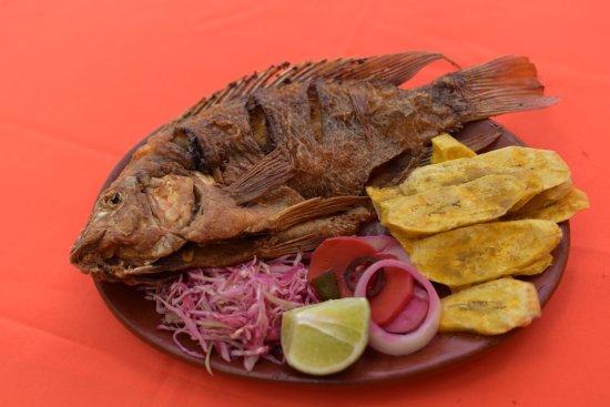 Hotel Villa De Ada: El pescado tilapia roja es el plato especial de la casa