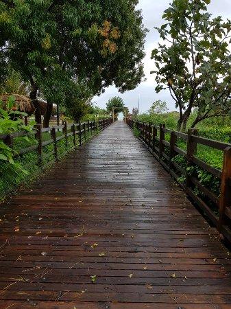 Gloria Serenity Resort: 20171025_084726_large.jpg