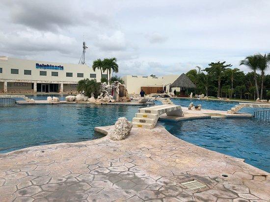 Dolphinaris Cancún: photo1.jpg