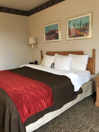Comfort Inn照片