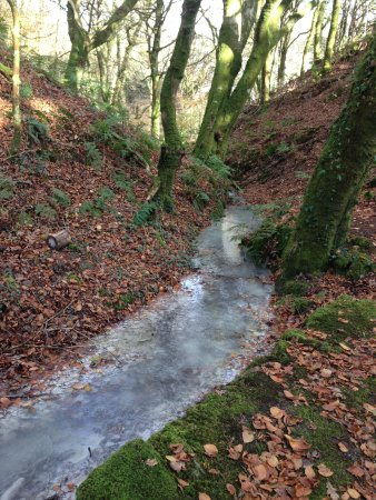 St Austell, UK: Milky stream due to the china clay particles