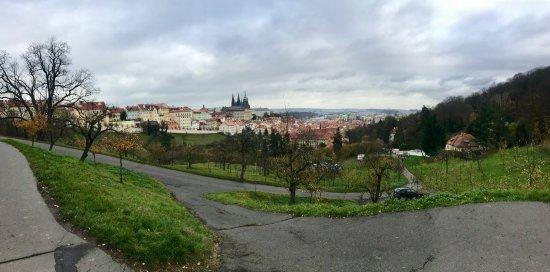 Segway Rent Prague : photo1.jpg