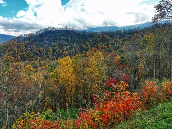 Townsend, TN: Beautiful fall foliage on the Foothills Parkway