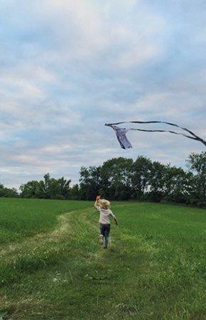Richland Center, WI: Field - Kite Flying