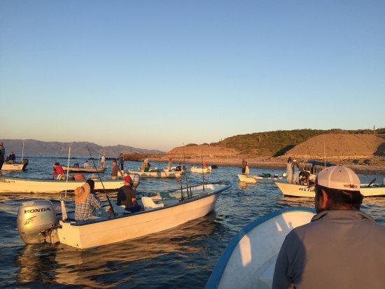 Tailhunter International Sportfishing: photo5.jpg