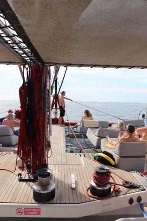 Freebird Catamaran: Sunbeds at the front