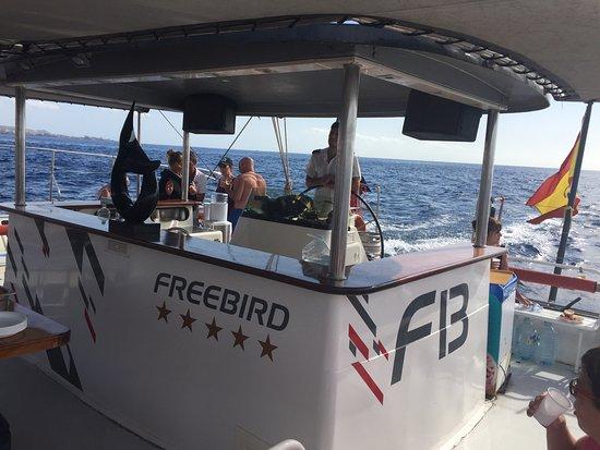 Freebird Catamaran張圖片