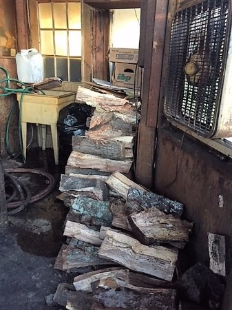 Garden City, Джорджия: Pecan wood for smoking, a gift from from Hurricane Irma.