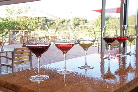 Sebastopol, Califórnia:  Char Vale Vineyards