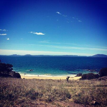 Swansea, Australia: Spiky Beach Conservation Area