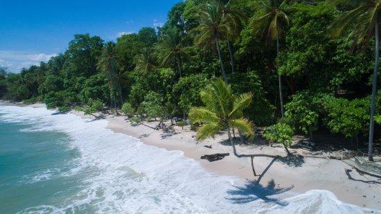 Bilde fra Punta Leona
