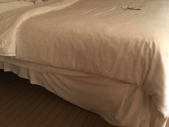 Sheraton Edison Hotel Raritan Center: Bed appearance upon entering room