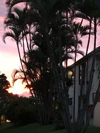 San Antonio De Belen, Costa Rica: photo3.jpg