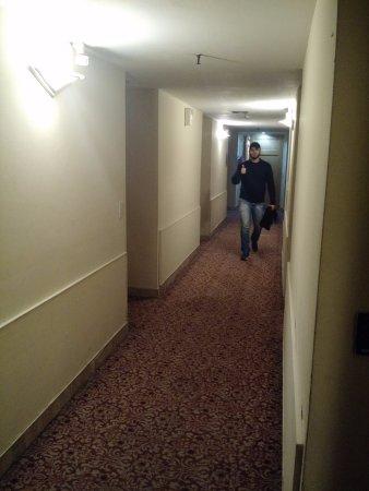 America Plaza Hotel: Corredor de acesso com carpete mas não cheira mal.