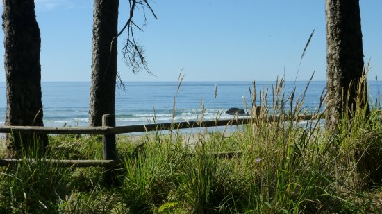 Seaside, OR: Mesmerizing view from shaded picnic table