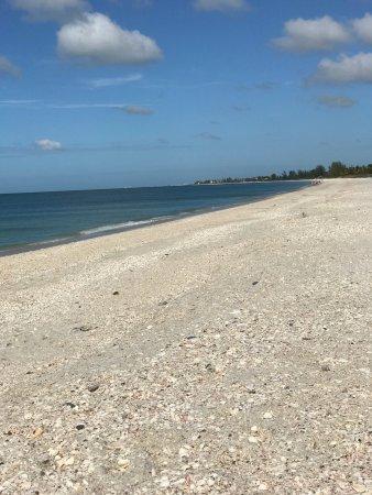 Gulfside Beach Club