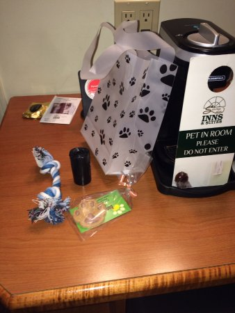 Service Plus Inns & Suites Calgary: Welcome treats for 4 leg friends