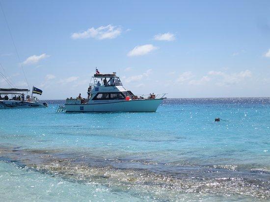 Ocean Encounters Diving: Klein Curacao