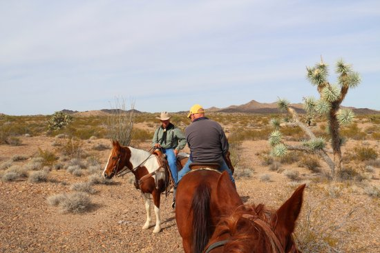 Yucca, Αριζόνα: Dave, his horse Levi, and our wrangler George.