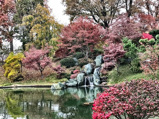 Missouri Botanical Garden: Japanese Garden Nov 12 2017
