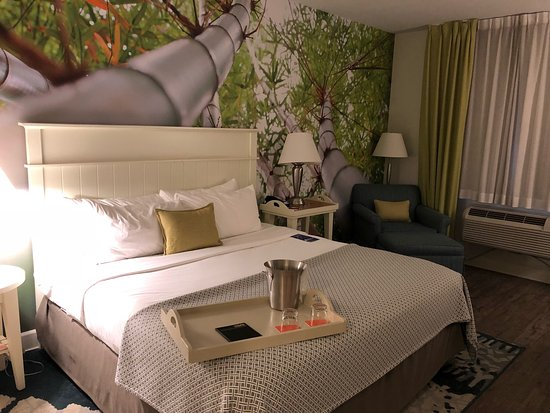 Hotel Indigo Sarasota: photo0.jpg