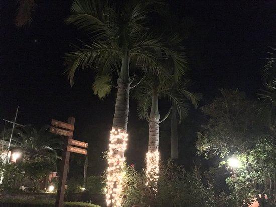 فندق رويال بامز: Nightly view